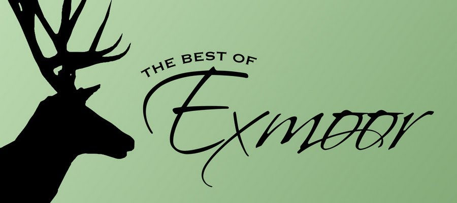 The Best of Exmoor